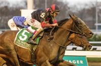 Tonalist Wins with a Late Rush in the Cigar Mile