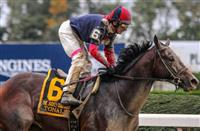Tonalist takes second straight Jockey Club Gold Cup