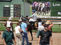 September 15, 2009: Touchdown Jesus on the track after finishing 2nd in the 4th race at Louisiana Downs.