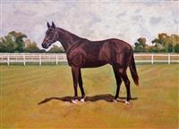 Trepan Horse