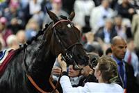/horse/Treve