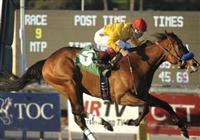 February 15, 2010.Tuscan Evening riden by Rafael Bejarano wins The Buena Vista Handicap at Santa Anita Park, Arcadia, CA