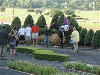 September 15, 2009: Uno Mas in Louisiana Downs winners' circle following Super Derby Prelude win.