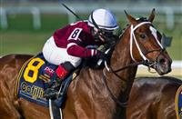 The Lady is a Champ: Untapable in the Cotillion