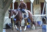Untapable Trains in Saratoga for the Haskell - VIDEO