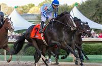 Upstart returns a winner in the Razorback