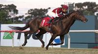 November 27, 2010.Victor's Cry riden by Victor Espinoza wins the Citation Handicap at Hollywood Park, Inglewood, CA