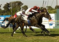 Victor's Cry wins the 2010 Shoemaker Mile over Karelian