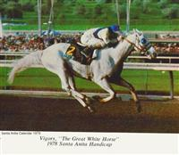 1978 Santa Anita Calendar pic of Vigors