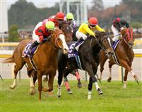 Vodka captures the 2009 Japan Cup