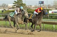 Whiskey Ticket becomes experienced in the Illinois Derby