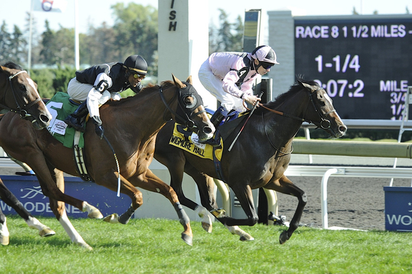 Wigmore Hall with jockey Jamie Spencer wins the Grade 1 Northern Dancer Turf Stakes at the Woodbine Racetrack.