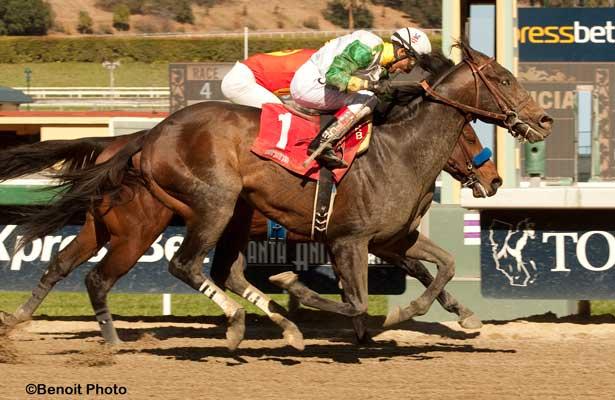 Wild Dude wins 2014 Palos Verdes.