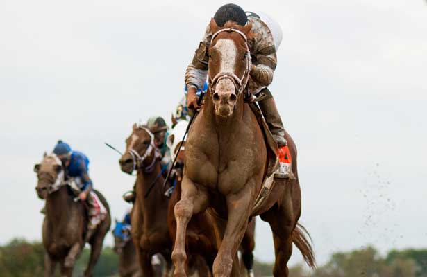 Will Take Charge, ridden by Luis Seaz, wins the Pennsylvania Derby on Pennsylvania Derby Day at Parx Racing in Bensalem, Pennsylvania on September 21, 2013.