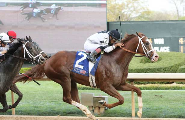 Will Take Charge wins 2014 Oaklawn Handicap