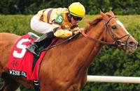 Wise Dan Faces Seven Opponents in Shadwell Turf Mile