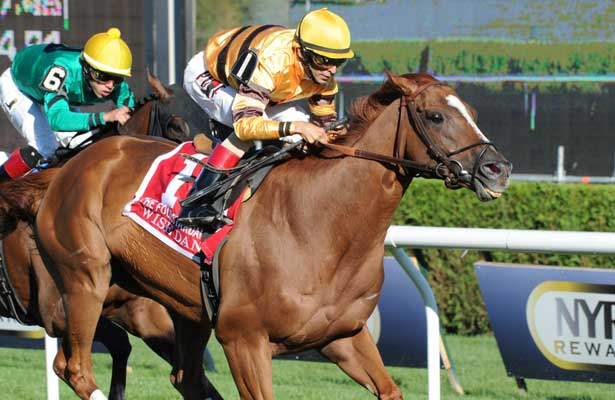 Wise Dan (no. 1), ridden by John Velazquez and trained by Charles Lopresti, wins the 29th running of the grade 2 Fourstardave Handicap for three year olds and upward on August 10, 2013 at Saratoga Race Course in Saratoga Springs, New York. (Bob Mayberger/Eclipse Sportswire)