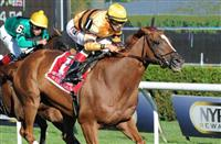 Doug Salvatore's 2013 Eclipse Award Selections