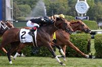 Wise Dan by a Nose in the Bernard Baruch