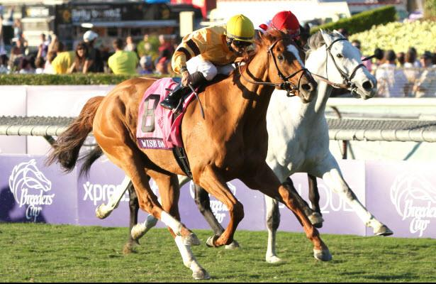 Wise Dan repeats in the Breeders Cup Mile.