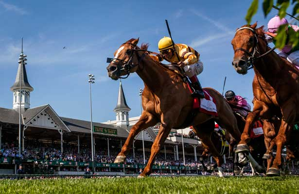Wise Dan Fights to Victory