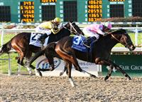 Zardana shocks Rachel Alexandra in the New Orleans Ladies at the Fair Grounds