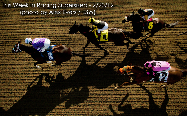 This Week In Racing cover photo Feb. 20 featuring Personalitary at Santa Anita