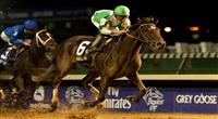 Royal Delta wins 2011 Ladies' Classic.