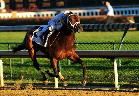 28 November 2009: Calvin Borel and Super Saver take the 83rd running of the G2 Kentucky Jockey Club stakes at Churchill Downs in Louisville, Kentucky.