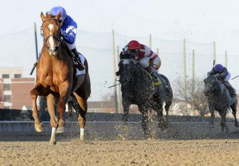 Flashing wins Gazelle Stakes
