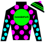JamminPark Silks
