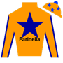 kfarinella Silks