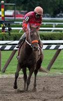 All Of Her Twist, Saratoga 2009