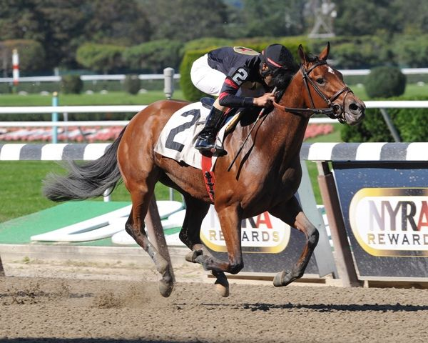 Awesome Feather wins 2011 Le Slew.