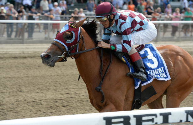 Bessie's Boy, winner of the 2014 Tremont Stakes