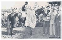 After winning the Washington Park Futurity