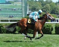 Captain Webb breaks maiden at Saratoga.