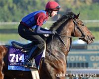 The Great War & Joseph O'Brien ~ Santa Anita