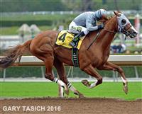 California Chrome & Victor Winning the San Pasqual