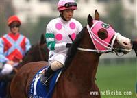 /horse/Kongo Rikishio