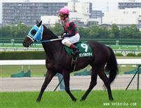 /horse/Dantsu Hotei