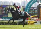 /horse/Curren Chan