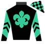 ScottDick Silks