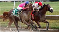 Blind Luck and Havre De Grace