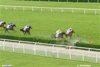 /horse/Chicquita