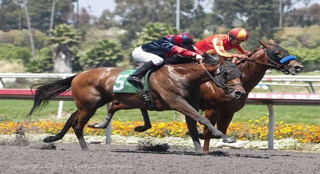 July 9, 2011.Dreamy Kid ridden by Joseph Talamo coming up on the outside to win te Swaps Stakes at Hollywood Park, Inglewood, CA