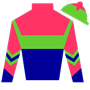 horselover98 Silks