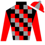 Horseracingirl Silks