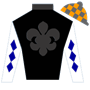 kenneth.ottosson.12 Silks