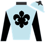 mdenfield Silks